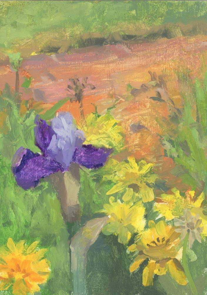 Iris and Yellow flowers